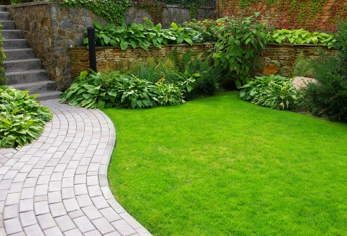 Free Lawn Care Survey & Quote