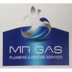 Mr Gas