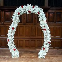 Wedding Arches, Backdrops and more