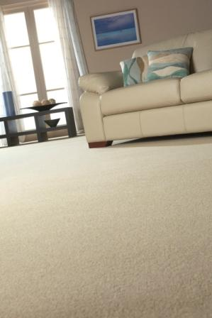 Stain proof carpet