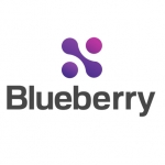 Blueberry Consultants Ltd