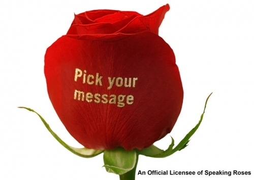 Print any message, image or logo on fresh roses