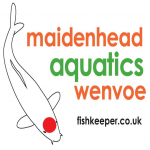 Maidenhead Aquatics Wenvoe